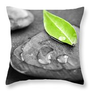 Zen Stones Throw Pillow by Elena Elisseeva