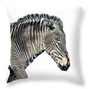 Zephyrus Zebra IIi Throw Pillow