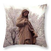 Ziba King Memorial Statue Front View Florida Usa Near Infrared Se Throw Pillow