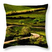 Zigzags Of A Path Throw Pillow