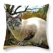 Zing The Cat In The Fall Throw Pillow