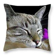 Zing The Cat Sleeping Throw Pillow