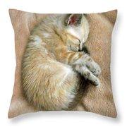 Zing The Kitten Throw Pillow