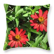 Zinnia Gardens-1 Throw Pillow