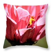 Zinnia Macro Throw Pillow