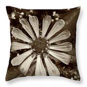 Zinnia Monochrome Throw Pillow