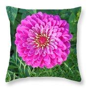 Zinnia - Pink Throw Pillow