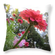 Zinnia Side View Throw Pillow