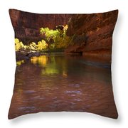 Zion Canyon Of The Virgin River Throw Pillow