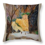 Zion Hike Throw Pillow
