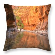 Zion Narrows Bend Throw Pillow