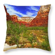 Zion Park Canyon Throw Pillow