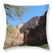 Zion Park Impression Throw Pillow