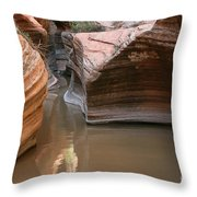 Zion Puddle Throw Pillow