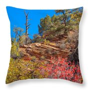 Zion Reds Throw Pillow