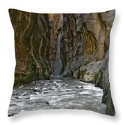 Zions 002 Throw Pillow