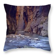 Zions 015 Throw Pillow