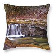 Zions 020 Throw Pillow