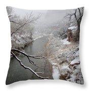 Zion's Virgin River Throw Pillow