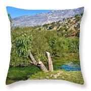 Zrmanja River And Velebit Mountain Throw Pillow