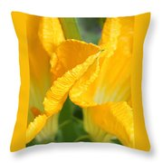 Zucchini Flowers In May Throw Pillow