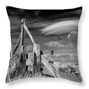 Zurich Station Throw Pillow
