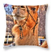 And To The Republic For Which It Stands    Throw Pillow