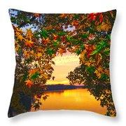 Autumn Leaves A View Throw Pillow