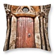 Bronze - Old Door Throw Pillow