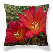 Cacti Bloom Throw Pillow