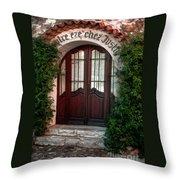 Doorway Eze  Throw Pillow