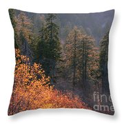 Great Smoky Mountains Morning Throw Pillow