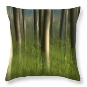 Green Alameda  Throw Pillow