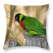 Lorikeet Parrot Sitting On A Fence Post  Throw Pillow