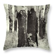 Muleshoe Trees Infra Red Throw Pillow