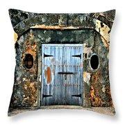Old Wooden Doors Throw Pillow