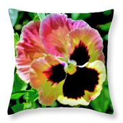 Pink And Yellow Pansy Throw Pillow