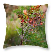 Plant In The Rain Throw Pillow