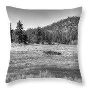 Prairie In South Lake Tahoe Throw Pillow