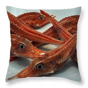Red Cherry Shrimp In The Market Throw Pillow