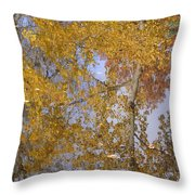 Reflecting Cedar Throw Pillow