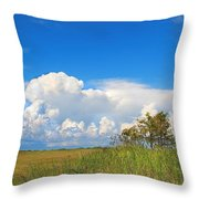 Shark River Slough - 1 Throw Pillow