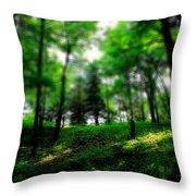 Simply Spring Throw Pillow by Bob Orsillo