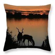 South African Sunset Throw Pillow