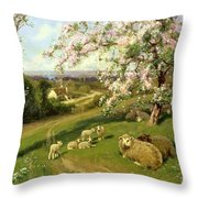 Spring - One Of A Set Of The Four Seasons  Throw Pillow