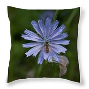 Spring Flower And Hoverfly Throw Pillow