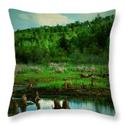 St Anne Throw Pillow