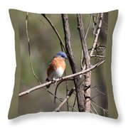 Sucarnoochee River - Bluebird Throw Pillow