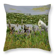 Swan And The Duck's Throw Pillow