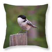 Willow Tit With Seeds Throw Pillow